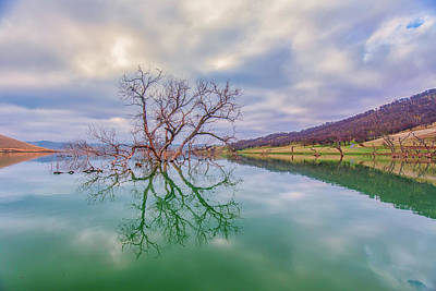Photograph - Morning Reflection by Marc Crumpler