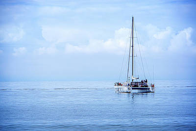 Photograph - Morning Sail by James Hammond