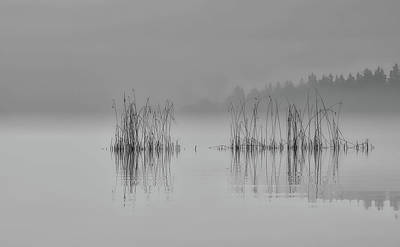 Photograph - Morning Silence by Finmiki