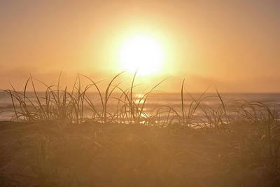 East Coast Wall Art - Photograph - Morning Sun by Az Jackson