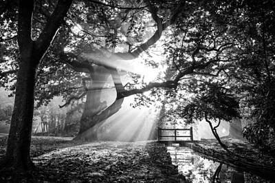 Photograph - Morning Sunrise In Hampden Park by Will Gudgeon