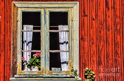 Photograph - Morning Window by Rick Bragan