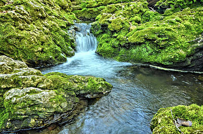 Photograph - Mossy Moine Falls by Bonfire Photography