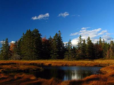 Maine Landscape Photograph - Mount Desert Island by Juergen Roth