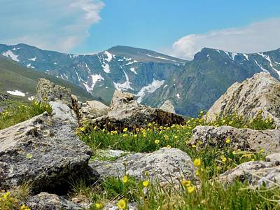 Photograph - Mount Evans Wilderness by Dan Miller