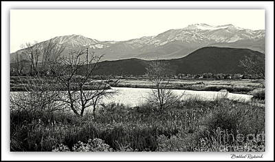 Photograph - Mount Rose  by Bobbee Rickard
