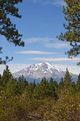 14k Photograph - Mount Shasta by Daniel Hebard