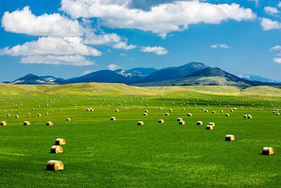 Gold Fill Photograph - Mountain Fields by Todd Klassy