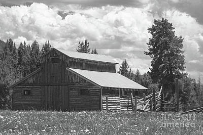 Photograph - Mountain Log Barn by Steven Parker