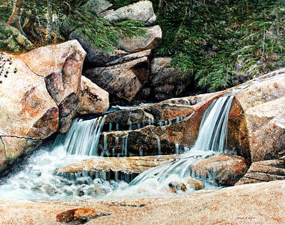 Painting - Mountain Stream by Frank Wilson