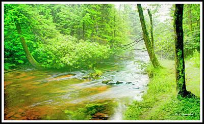 Mountain Stream, Pocono Mountains, Pennsylvania Art Print by A Gurmankin