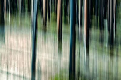 Abstract Movement Photograph - Movimento by Todd Klassy