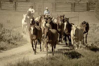Photograph - Moving The Horses by Jack Bell