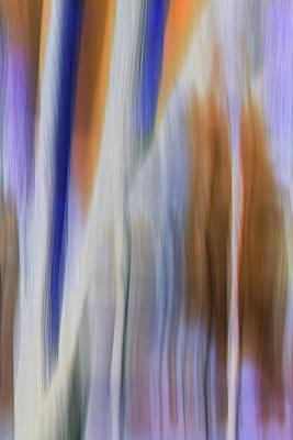 Digital Art - Moving Trees 37-31 Portrait Format by Gene Norris