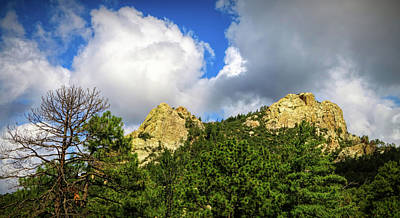 Photograph - Mt. Lemmon by Elaine Malott