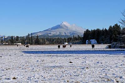 Photograph - Mt. Pilchuck by Rebecca Parker