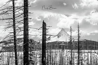 Photograph - Mt. Washington Landscape by Nick Boren