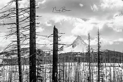 Photograph - Mt. Washington Landscape by Nick Boren