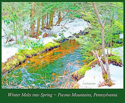 Photograph - Mud Run Pocono Mountain Stream Pennsylvania Season Change by A Gurmankin