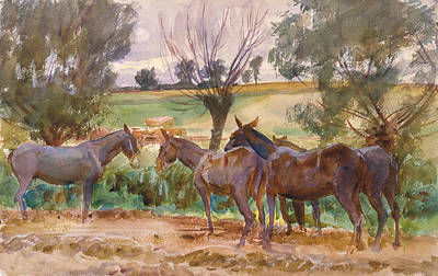 Drawing - Mules by John Singer Sargent