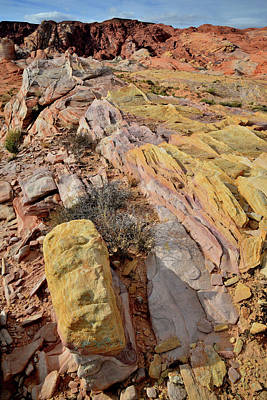Photograph - Multicolored Valley Of Fire Sandstone by Ray Mathis