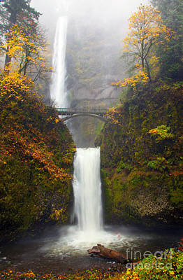 Multnomah Falls Waterfall Photograph - Multnomah Autumn by Mike Dawson