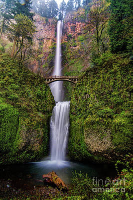Photograph - Multnomah Falls by Peter Dang