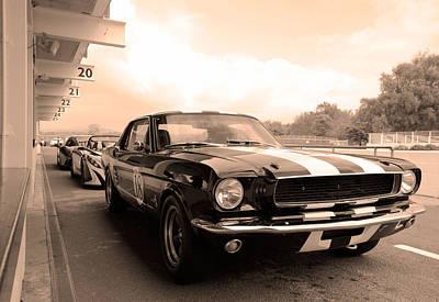 Photograph - Mustang by Robert Phelan