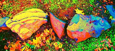 My Back Yard Rocks Art Print by Ann Johndro-Collins
