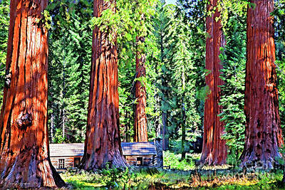 Photograph - Mystical Giant Sequoias Cabin by John Stephens