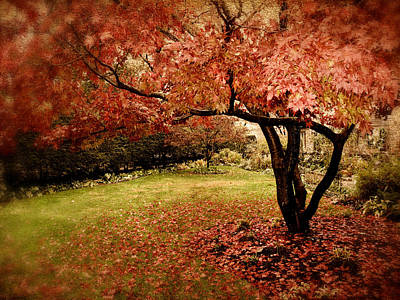 Red Leaves Digital Art - Mystical Maple by Jessica Jenney