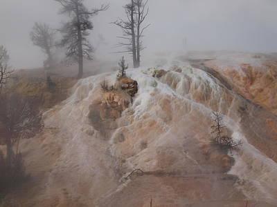 Mystical Nature Original by Kaela Krause