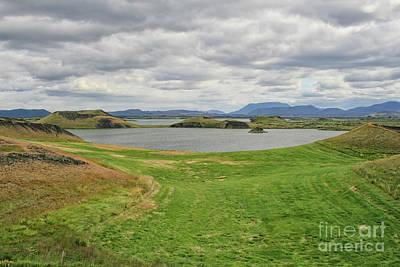 Moody Trees - Myvatn in Iceland by Patricia Hofmeester