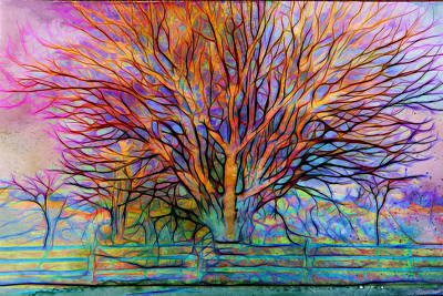 Impressionist Mixed Media - Naked Tree by Lilia D
