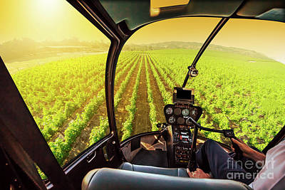 Napa Valley Scenic Flight Art Print