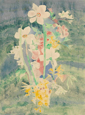Flower Still Life Drawing - Narcissi by Charles Demuth