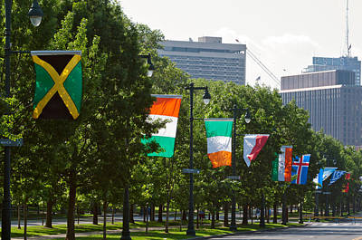 National Flags Of Various Countries Art Print