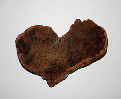 Photograph - Natural Driftwood Heart #3 by Larry Bacon