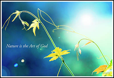 Digital Art - Nature Is The Art Of God by A Gurmankin