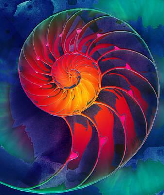 Digital Art - Nautilus Shell Orange Blue Green by Clare Bambers