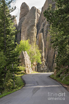 Needles Highway Art Print by Juli Scalzi