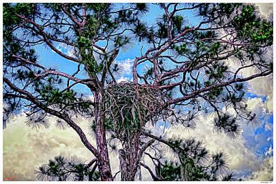 Management Mixed Media - Nesting Eagles by Rogermike Wilson