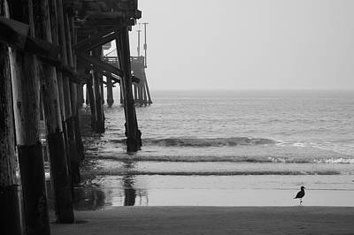 Photograph - Newport Beach Pier by Brian Eberly