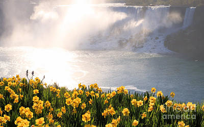 Photograph - Niagara American Falls Spring Morning by Charline Xia