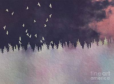Photograph - Night Flight by Kathie Chicoine
