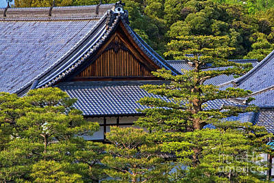Photograph - Nijo Castle Gardens Kyoto Japan by Waterdancer