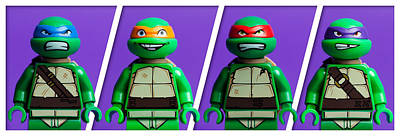 Mini Photograph - Ninja Turtles by Samuel Whitton