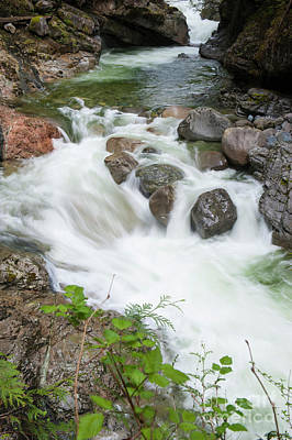 Photograph - Norrish Creek by Rod Wiens