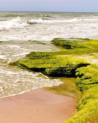 Photograph - North Carolina Beach by Don Wolf