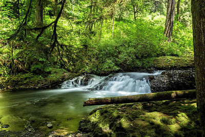 Photograph - North Fork Silver Creek, No. 2 by Belinda Greb